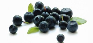 Frutos de Acai Berry son de las selvas amazónicas de Brasil