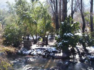 si no quieres caminar, igual puedes disfrutar de un lindo día de picnic (foto: http://www.santuariodelanaturaleza.cl/)