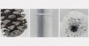 """""""Tres Amigos del Invierno: El Pino, el Bambú y la Flor del Ciruelo del artista"""" Liu Zheng"""